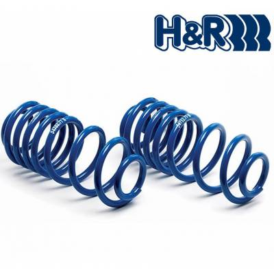 H&R пружины Performance Lowering Springs  для BMW X5/X6/X6M/X5M (E71/E70) (пневмо)